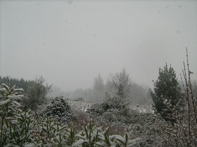 neige0251.jpg